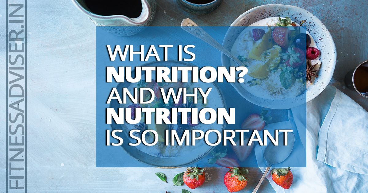 What-is-Nutrition?