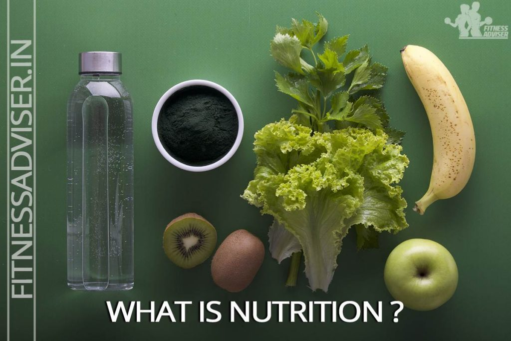 What-is-Nutrition